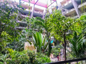 hotel-jungle-cancun
