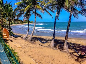 Rincon-Puerto-Rico-Beach-Hammock