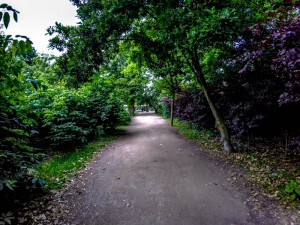 Vondel-park-Netherlands-Amsterdam