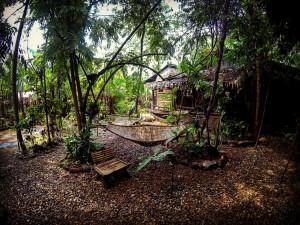 bamboo-garden-front
