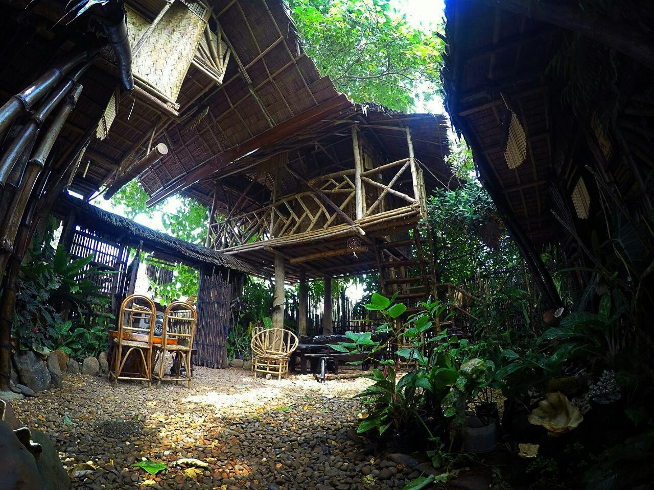 bamboo-nest-puerto