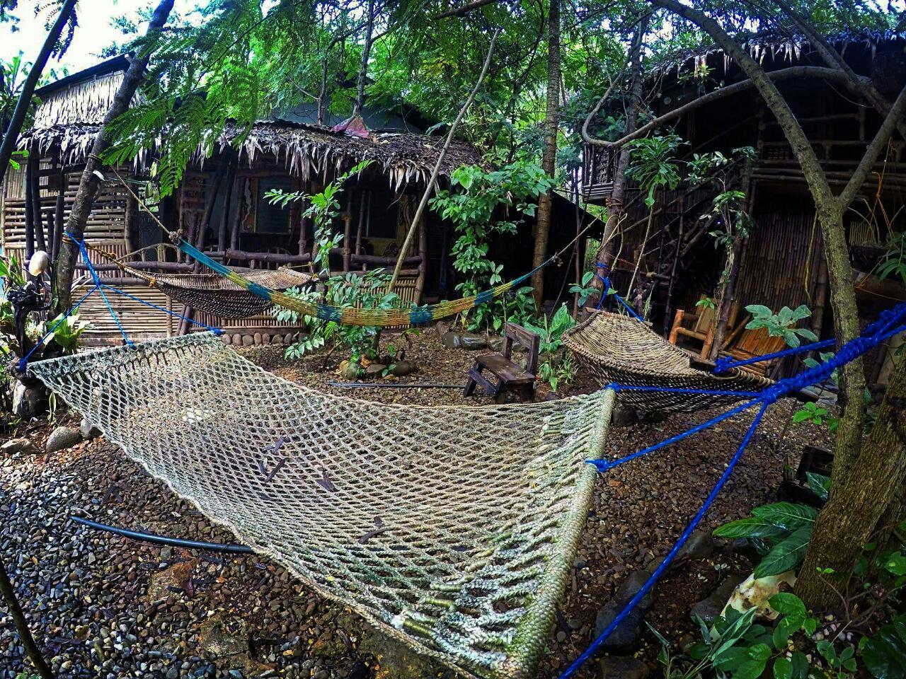 hammock-bamboo-nest