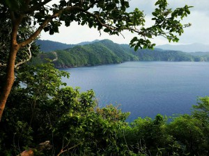 viewpoint-cacnipa-island