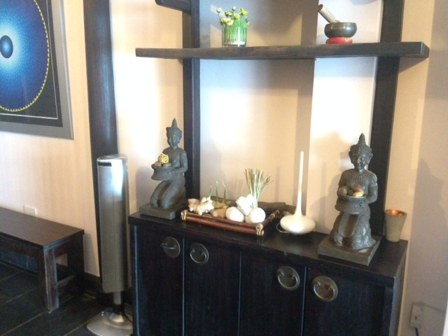 nice-decoration-Hoa-Sung-Spa