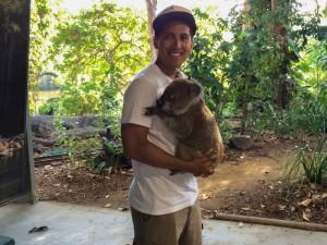 cuddle-koala-bear-travel-bucket-list